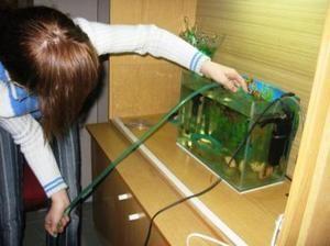 Jak vyčistit akvárium