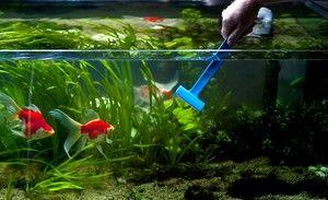 Metody čištění akvária