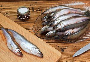 Vlastnosti rybaření