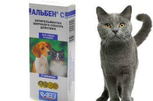Pokyny pro použití Alben pro psy a kočky