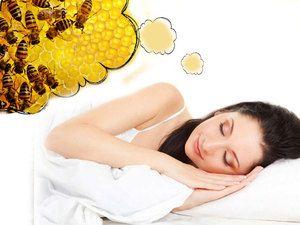 Spící hmyz