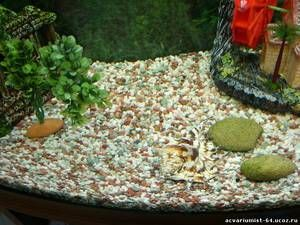 Písčitá půda pro akvárium