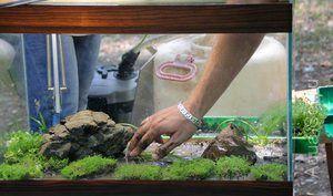 Mořský písek pro akvárium