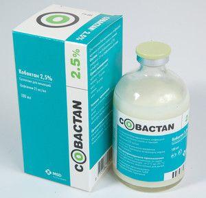 Kobaktan. Pokyny pro použití u koček