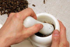 Popis způsobu léčby prostatitidy u včel