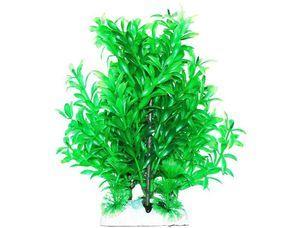 Jak péče o rostliny