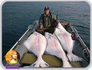 Rybaření na Sachalin