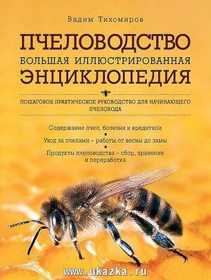 Советы опытных пчеловодов