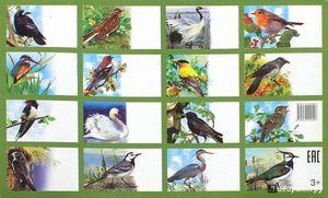 Seznam ptáků na území Ruska