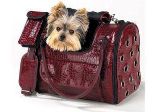 Taška pro psy - typy a kritéria výběru