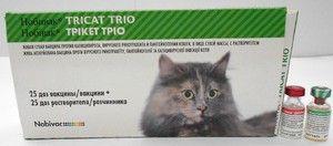 Nobivac vakcína pro kočky - návod k použití