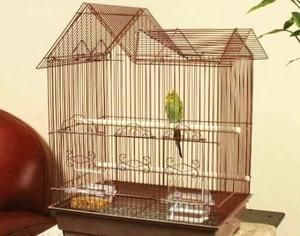 Cage pro papouška